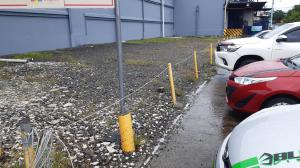 Terreno En Alquileren Bugaba, La Concepciona, Panama, PA RAH: 22-2654