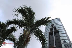 Oficina En Ventaen Panama, Campo Alegre, Panama, PA RAH: 22-3203