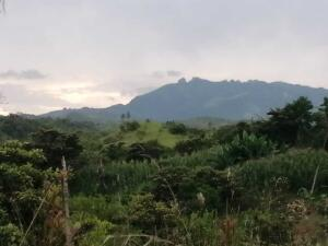Terreno En Ventaen San Carlos, San Carlos, Panama, PA RAH: 22-3127