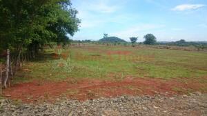 Terreno En Ventaen La Chorrera, Chorrera, Panama, PA RAH: 22-3214
