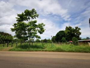 Terreno En Ventaen Las Tablas, Las Tablas, Panama, PA RAH: 22-3276