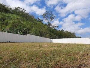 Terreno En Ventaen Panama, Altos De Panama, Panama, PA RAH: 22-3301