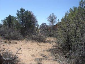 Photo of 14480 N Soza Mesa Lane, Prescott, AZ a vacant land listing for 0.56 acres