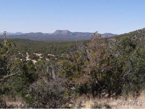 808 Sierra Verde Ranch, Seligman, AZ 86337