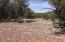 659 Sierra Verde Ranch, Seligman, AZ 86337