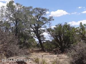 843 Sierra Verde Ranch, Seligman, AZ 86337