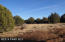 36 Shadow Rock Ranch, Seligman, AZ 86337