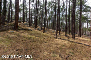 Photo of 1158 E Stage Coach Road, Prescott, AZ a vacant land listing for 0.28 acres