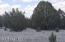 20 Sierra Verde Ranch, Seligman, AZ 86337