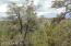 Lots 89/90 W Circle Drive, Seligman, AZ 86337