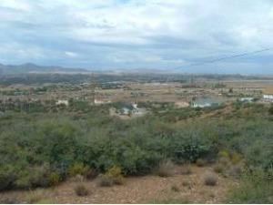 14611 E White Drive, Dewey-Humboldt, AZ 86329
