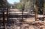 63 Shadow Rock Ranch, Seligman, AZ 86337