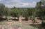 42900 N Shadow Rock Trail, Seligman, AZ 86337