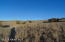 431 Sierra Verde Ranch, Seligman, AZ 86337