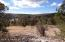 101 Shadow Rock Ranch, Seligman, AZ 86337