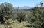 264 Sierra Verde Ranch, Seligman, AZ 86337