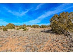 Photo of 15350 N Elizabeth Way, Prescott, AZ a vacant land listing for 0.58 acres