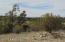 35800 W. Silent Shadow Trl, Seligman, AZ 86337