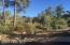 2190 Forest Mountain Road, Prescott, AZ 86303