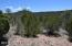 1520 Sierra Verde Ranch, Seligman, AZ 86337