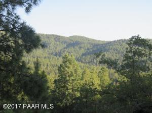31xx E Crosscut Trail, Walker, AZ 86303
