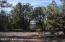 807 Sierra Verde Ranch, Seligman, AZ 86337