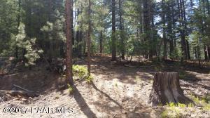 Photo of 2810 E Shelf Road, Prescott, AZ a vacant land listing for 0.55 acres
