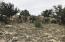 1494 N Lion Canyon Dr, Seligman, AZ 86337