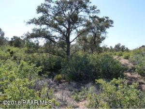 Photo of 4195 Fort Bridger Road, Prescott, AZ a vacant land listing for 1.26 acres