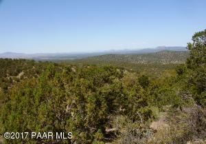 43600 N Moonshine Road, Seligman, AZ 86337