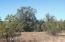 686 Medicine Man Trl, Seligman, AZ 86337