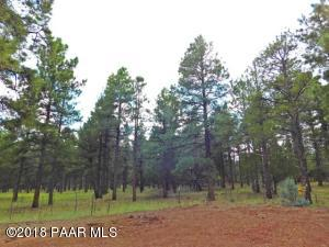 Photo of 3729 W Cohonina Trail, Williams, AZ a vacant land listing for 1.20 acres