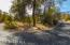 Cul-de-sac portion of Willow Oak Road with only 4 homes & lots of natural vegetation