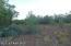 478 Sierra Verde Ranch, Seligman, AZ 86337