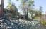 1716 Alpine Meadows Lane, 505, Prescott, AZ 86303
