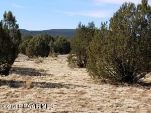 185 Fort Rock, Seligman, AZ 86337