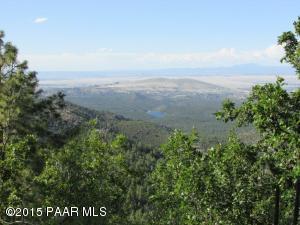 0xxx E Bald Mountain Road, Prescott, AZ 86303