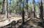 4400 E Pine Mountain Road, Prescott, AZ 86303