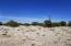000 Hyde Park Road, Seligman, AZ 86337