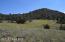5285 W Three Forks Road, Prescott, AZ 86305