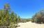 Lot 38 N Trout Creek Trial, Seligman, AZ 86337