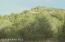 815 Sierra Verde Ranch, Seligman, AZ 86337