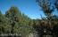 Lot 770 Younger Trail, Seligman, AZ 86337