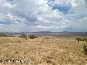 153 Un Named Road, Seligman, AZ 86337