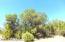 Lot 563 W Howling Coyote Road, Seligman, AZ 86337