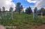 Fenced Horse Corral at back of property
