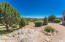 Granite outcroppings on this very private & gently rolling property.