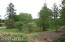 Wooded View-Privacy