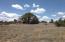 12750 N Puntenney Road, Prescott, AZ 86305