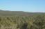 1424 Sierra Verde Ranch, Seligman, AZ 86337